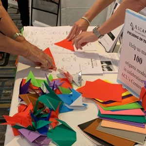 """Folding in the Fun"" at ACL Institute"